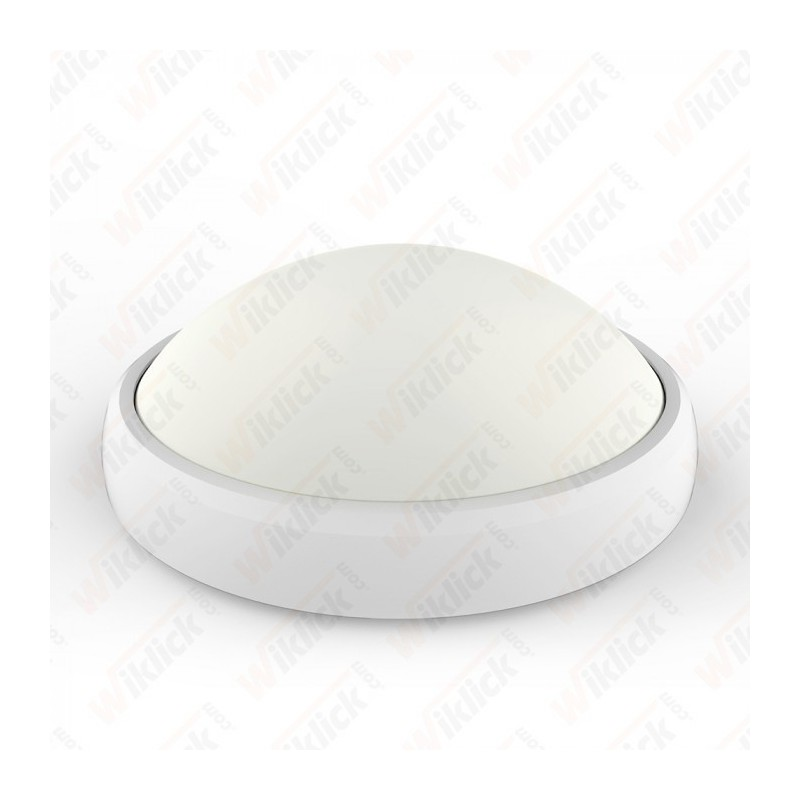 12W LED Full Oval Ceiling Lamp White Body IP65 3000K