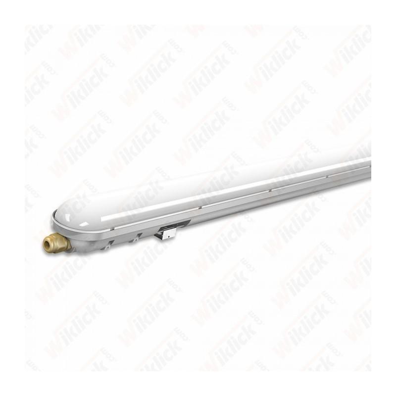 LED Waterproof Lamp PC/PC 1500mm 48W 4500K
