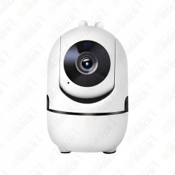 1080P IP Indoor Camera With...