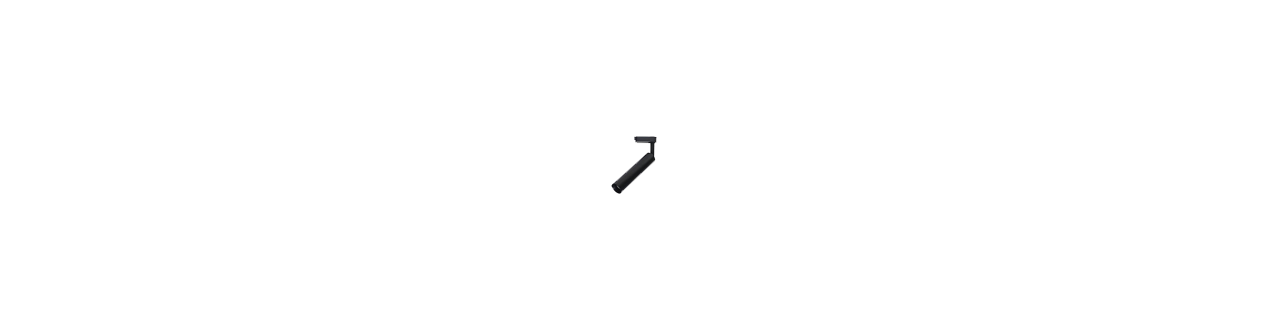 Vendita illuminazione Faretti da Binario che è consigliabile a coloro i quali hanno o un solo punto luce a soffitto o parete